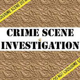 Crime Scene Investigation Games