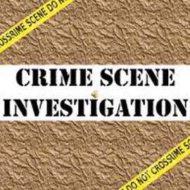 Crime Scene Investigation Games